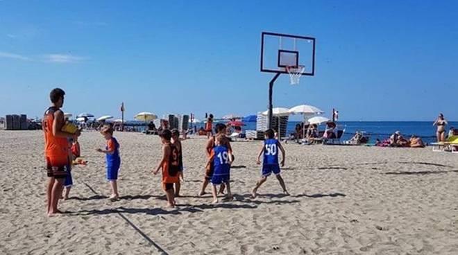 basket focene