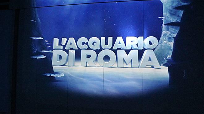 Acquario di Roma