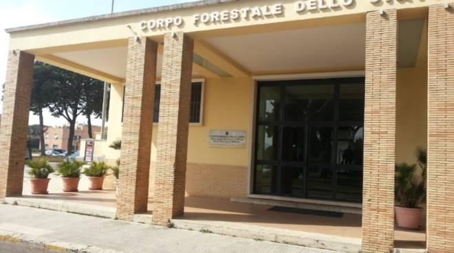 scuola forestale sabaudia