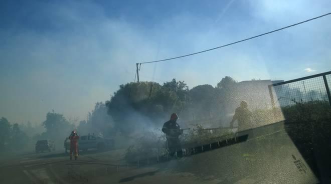 Foto_1_Incendio rifiuti_Ardea_Complesso Le Salzare_2018_08_07