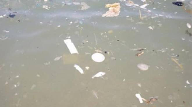 Inquinamento Mare Ardea_2018_08_18
