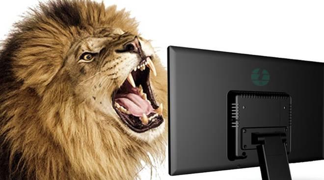 leoni da tastiera