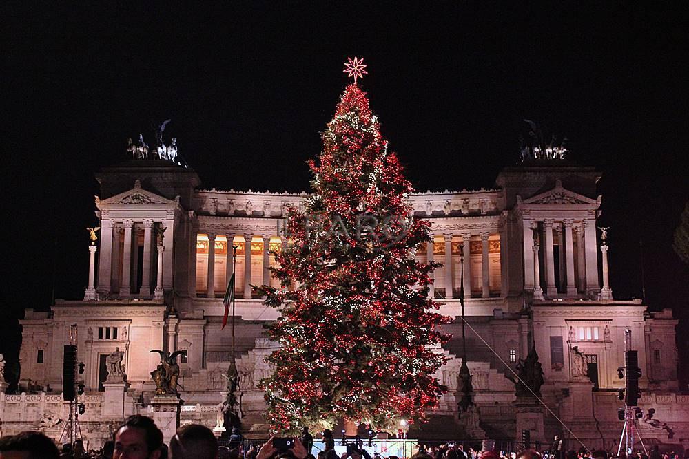 """In piazza Venezia si accende """"Spelacchio"""", applausi per albero star dei social"""