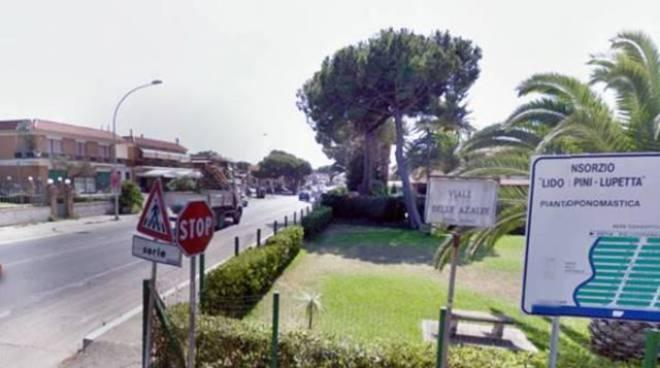 Consorzio Lupetta_ARDEA