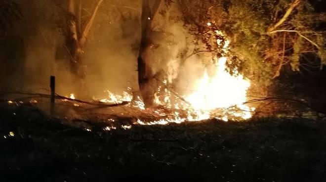 Incendio a Fondi, devastata la zona del laghetto degli Alfieri