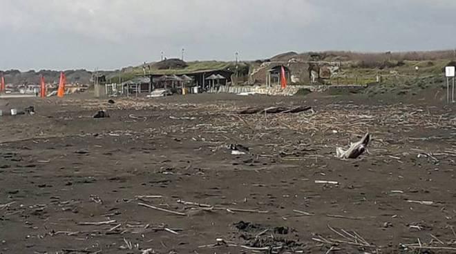pulizia spiagge fiumicino
