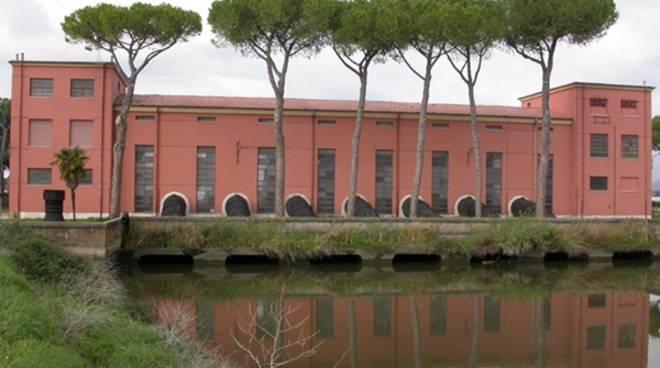 Alberi pericolanti vicino agli impianti idrovori di Mazzocchio e Borgo Hermada, interviene il Consorzio di Bonifica
