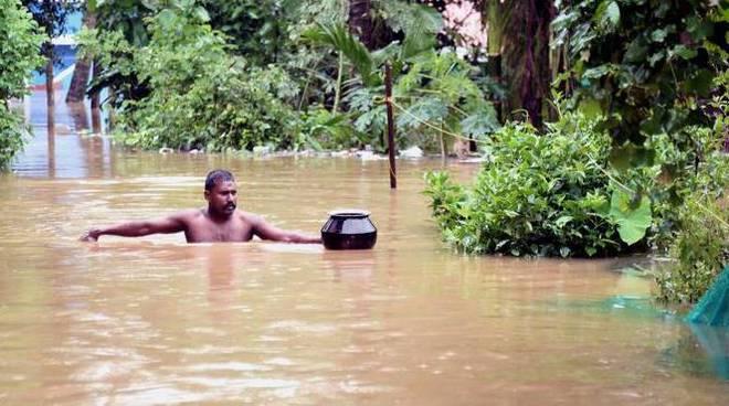 monsoni india