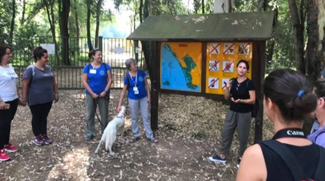 """""""Elicriso"""" nel Parco nazionale del Circeo: tutto pronto per il prossimo appuntamento"""