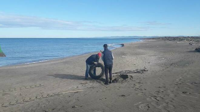 pulizia spiaggia coccia di morto