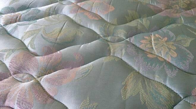 cimici materasso