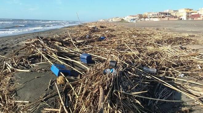 rifiuti spiaggia ardea