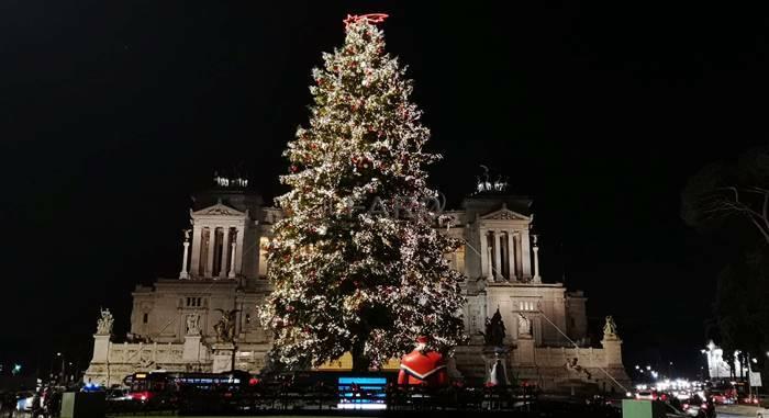 spelacchio piazza venezia 2019