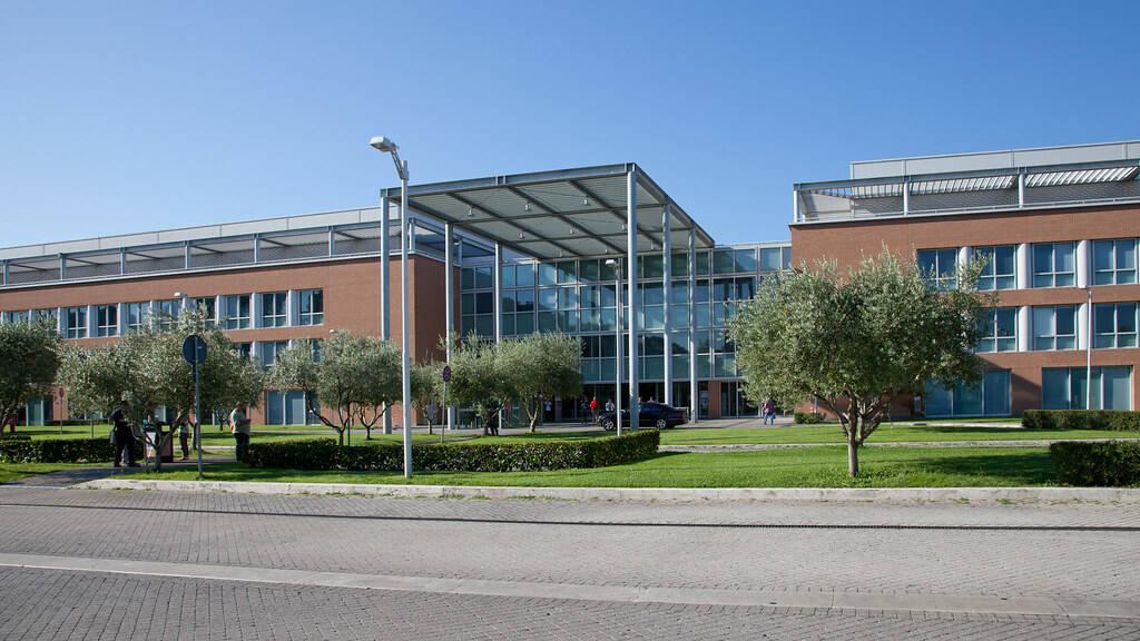 università campus