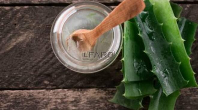 Usa il gel di Aloe Vera e sei subito più tonica.