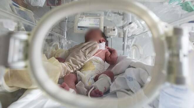 neonato policlinico gemelli coronavirus