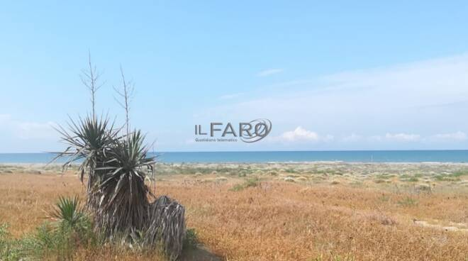 Spiaggia Sabbie d'Oro Ardea