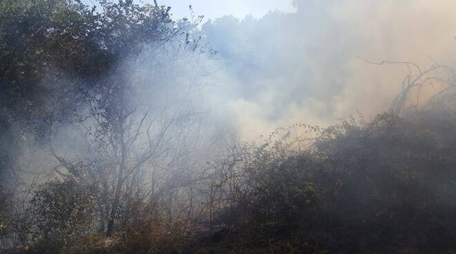 Paura a Fiumicino, incendio in via dell'Arrone: interviene anche un canadair