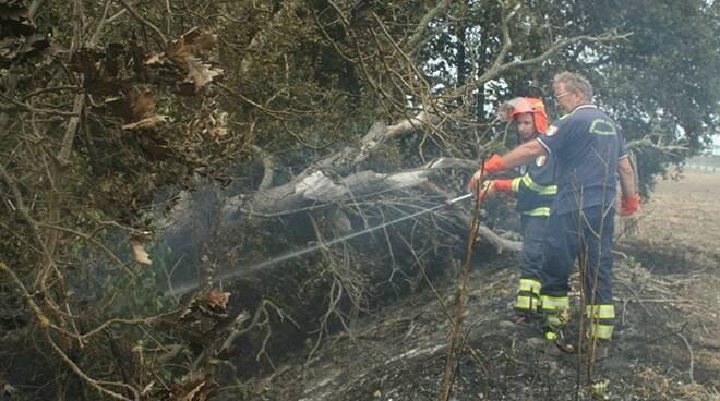 vigili del fuoco in congedo di fregene