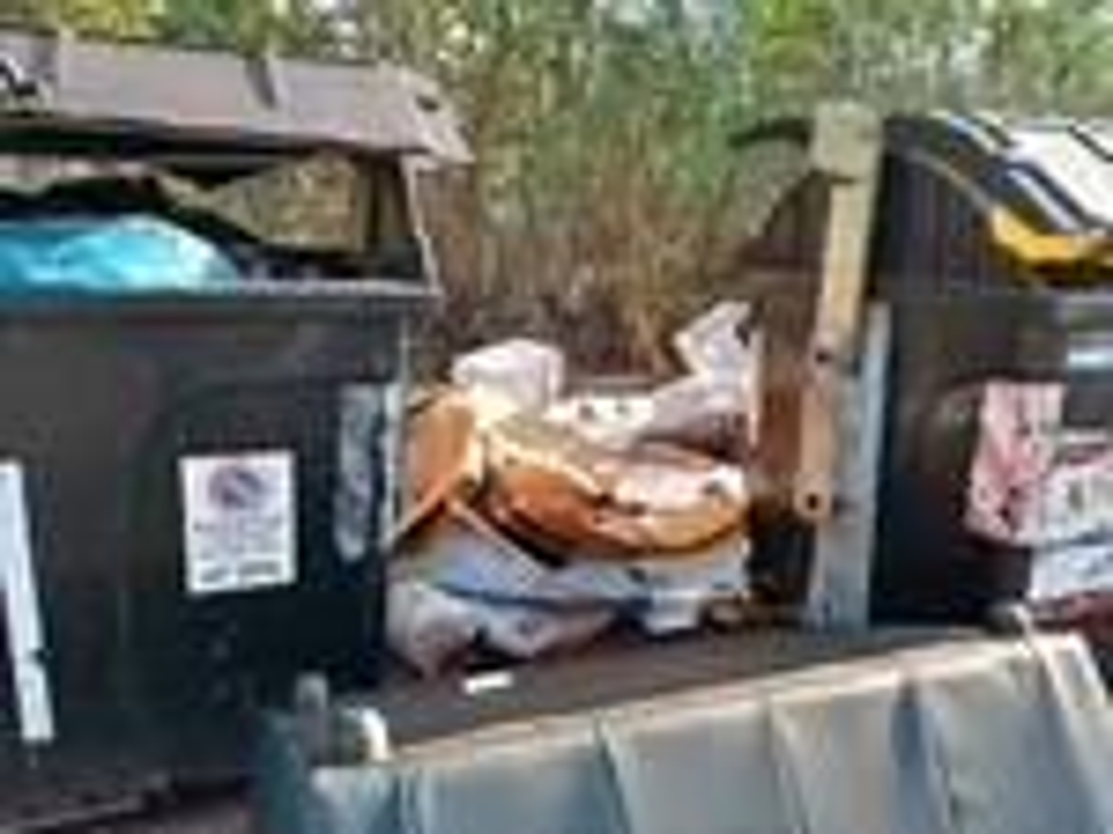 rifiuti via della tortuga ostia