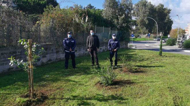 arbusti polizia locale