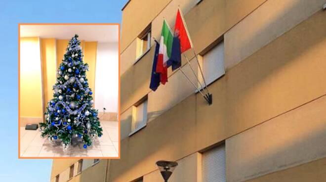albero di Natale comune Ardea