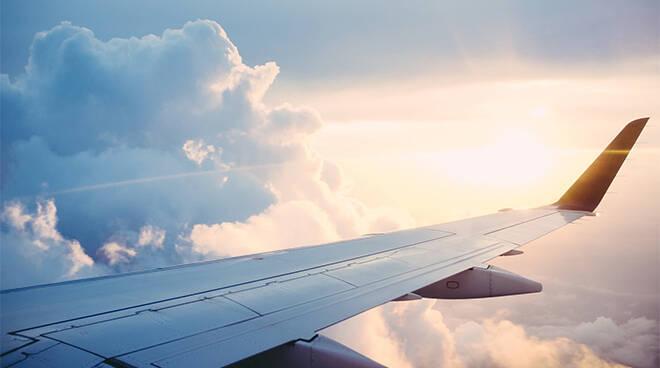 Covid-Free Flights