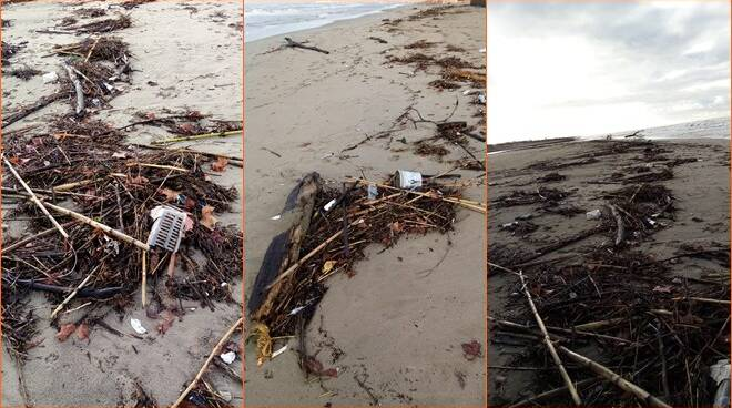 rifiuti litorale fiumicino