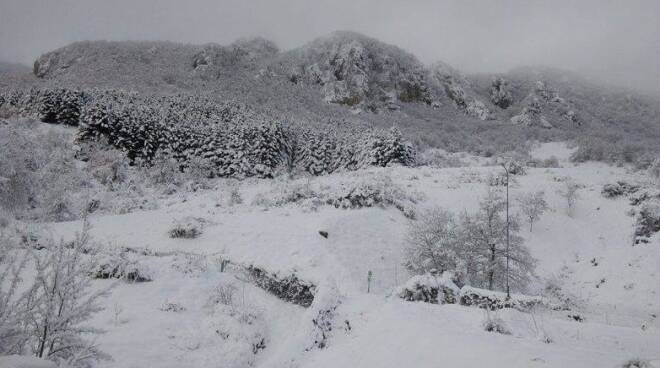 neve lazio