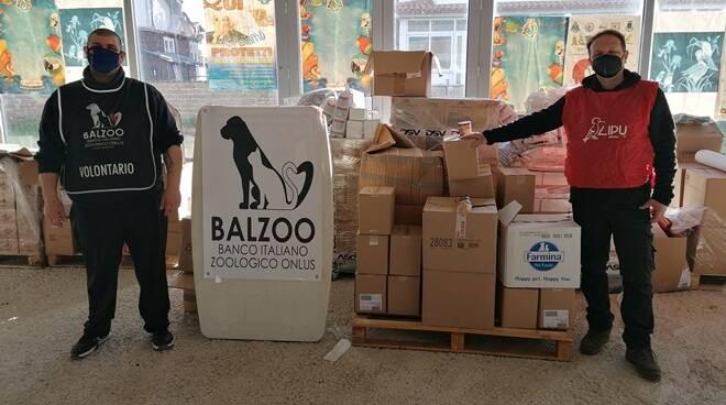 Balzoo -Lipu