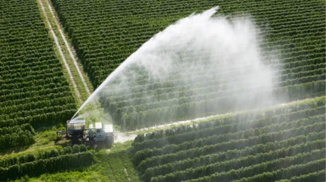 irrigazione campi