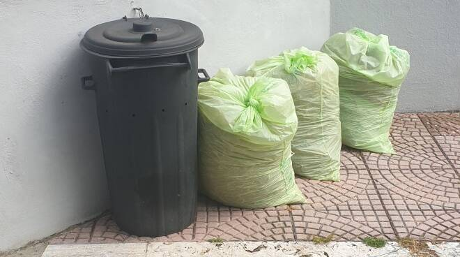 rifiuti verde ardea