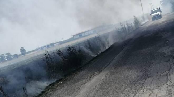 incendio sterpaglie fiumicino