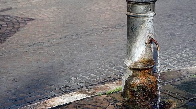 nasona fontanella