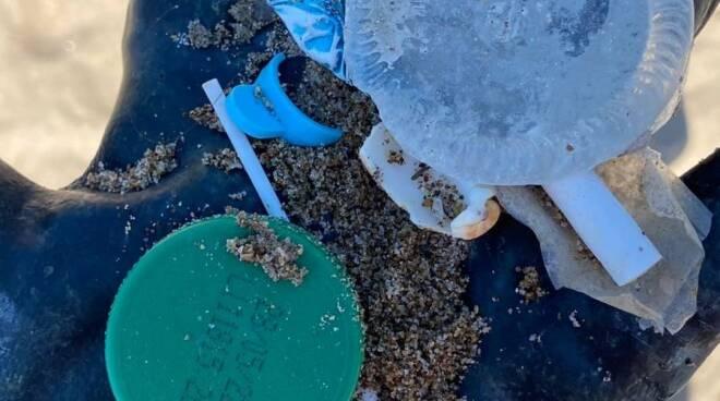pulizia spiagge Anzio
