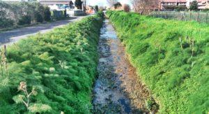 canali di bonifica fiumicino
